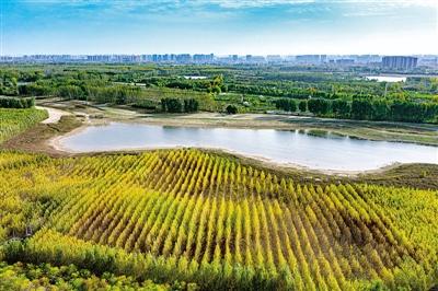 黄河之滨再添胜景 郑州沿黄景观大道预计5月全线通车