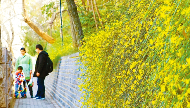 郑州市征集消费维权志愿者