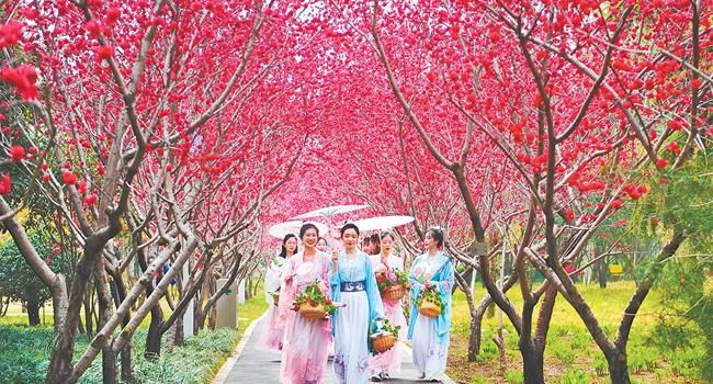 """阳春三月 去绿博园""""问花""""吧"""